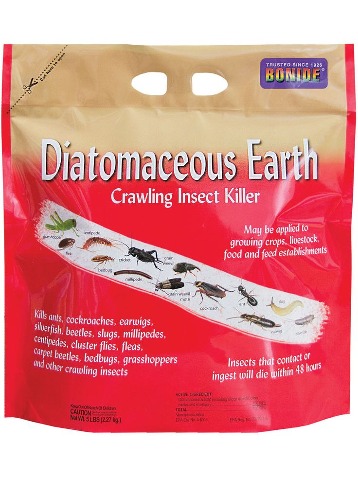 Where to buy diatomaceous earth to stop ants fleas bed - How to use diatomaceous earth in the garden ...