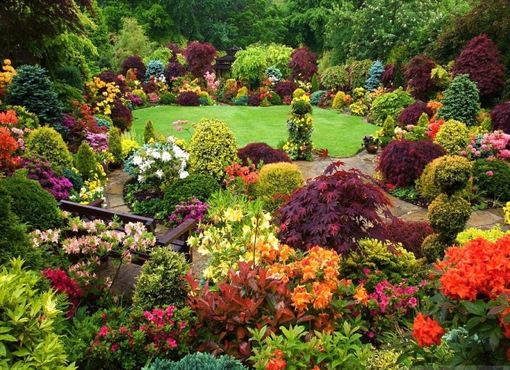 How to Make a Beautiful Garden in home | 21 Articles