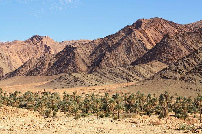 Une oasis dans la région de Tata