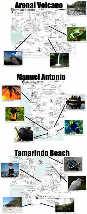 Best trip ever Arenal, Monteverde and Tamarindo Beach - free map downloads are detailed, accurate and up to date
