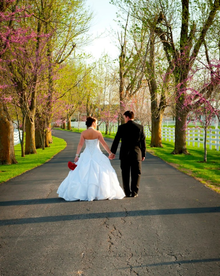 17 Best Images About Wedding Photography Contest On