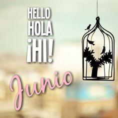 Bienvenido Junio / Welcome June