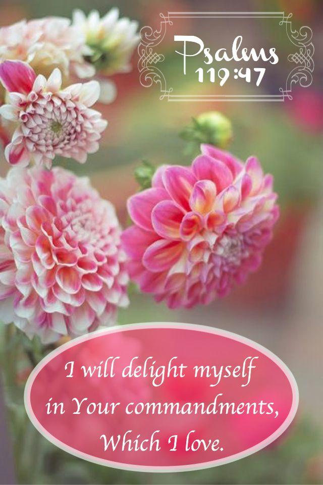 Psalm 119:47