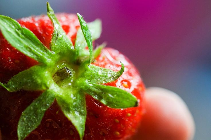 Colorful Strawberry Close Up Free Image Download