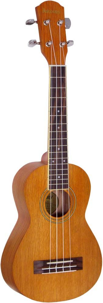 Ashbury AU-60 Concert Ukulele, Ash top, back and sides, bound fingerboard, geared tuners. Aquila Strings  at Hobgoblin Music-Great Music shop in Brighton. MY NEW UKULELE!