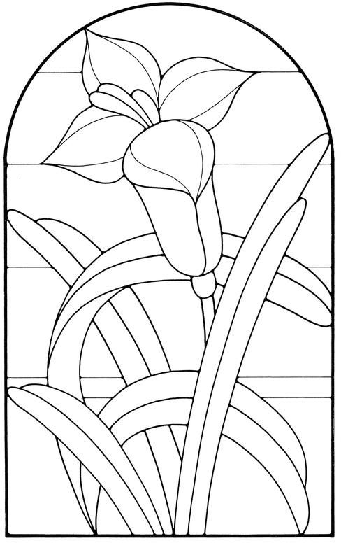 Art Nouveau Stained Glass Pattern Book Cala lily