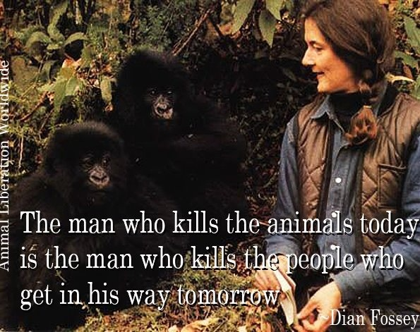Dian Fossey. Incredibly strong, genuine and passionate woman who truly lived by, and was murdered because of, her values. I so admire her.