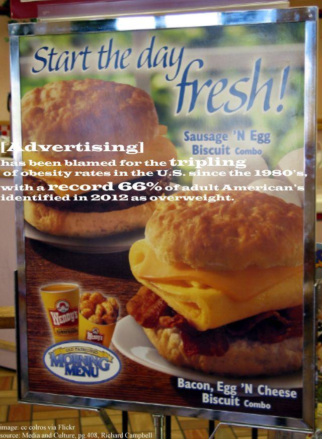 Misleading Fast Food Ads by JustinB