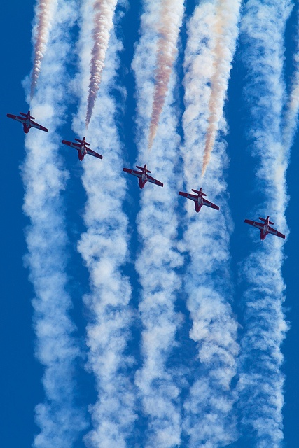 Snowbirds at the Canadian International Airshow 2012 - CNE