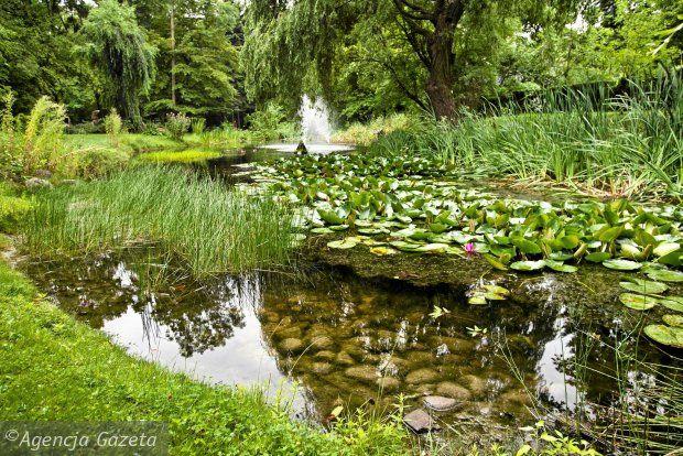 #ogród #botaniczny #UKW #rozkosz #plener #50twarzybydgoszczy
