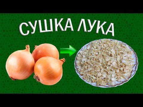 Как приготовить сушеный лук зеленый, репчатый и порей на зиму, используя духовку и электросушилку?