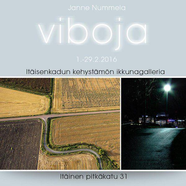 Helmikuussa 2016 Itäisenkadun Kehystämön Ikkunagalleriassa Janne Nummela, Viboja.