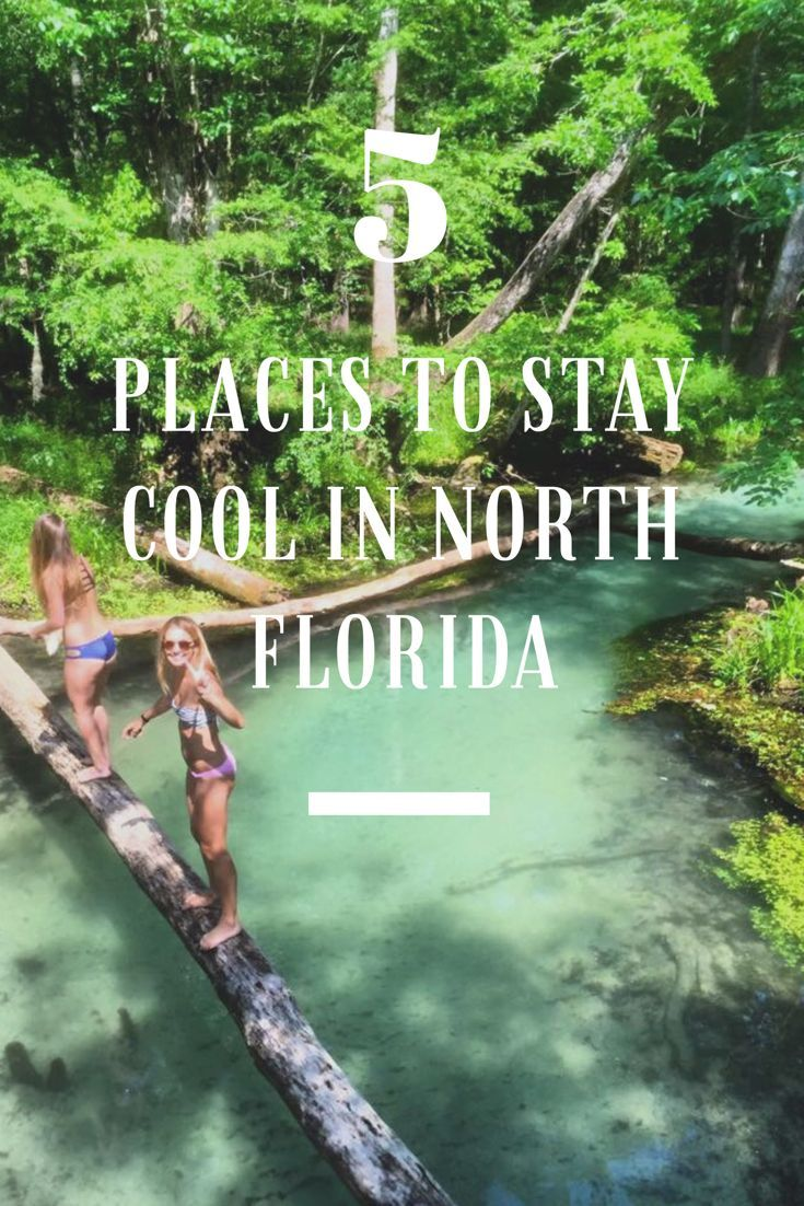5 Places To Cool Off In North Florida Parks In Florida Springs In Florida Things To Do In Florida Locals In F North America Travel Florida Travel Florida