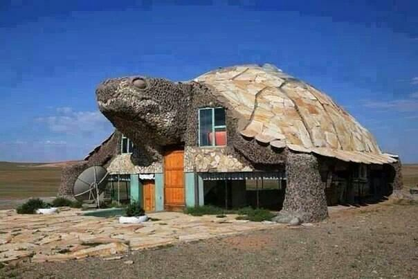 Turtle house in Mongolia Unusual Homes & Architecture Pinterest ...
