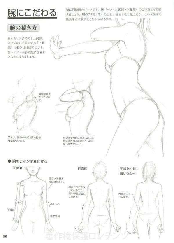 Pin By Argayasa Kurnia On Female Anatomy And Pose Pinterest