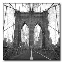 Cables of the Brooklyn Bridge Black and White Image