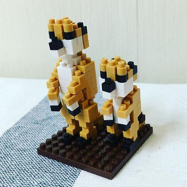 #나노블럭 #미어캣 다 만들고 나면 #블럭 이 작아서 디테일있고 귀여운데 #레고 에 비해서 넘약하고 눈이빠질거같다 ㅋㅋㅋ  #nanoblock #daily #photo #meerkats