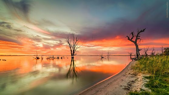 """Lake Bonney is in the """"Riverland"""" district of South Australia Image by Ardash muradian http://google.com/+ArdashMuradian"""