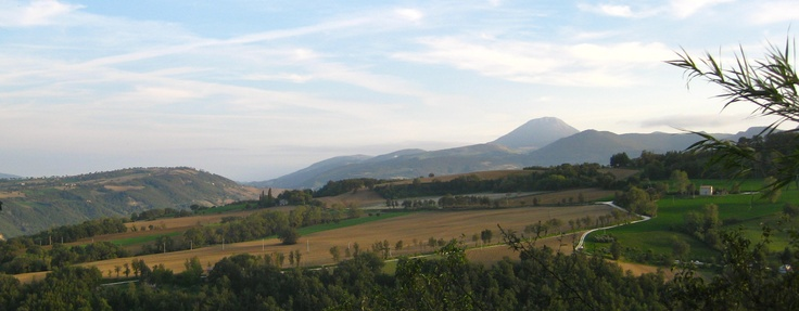 Near Mergo / Trivio, provincia Ancona. At the horizon: Monte San Vicino.