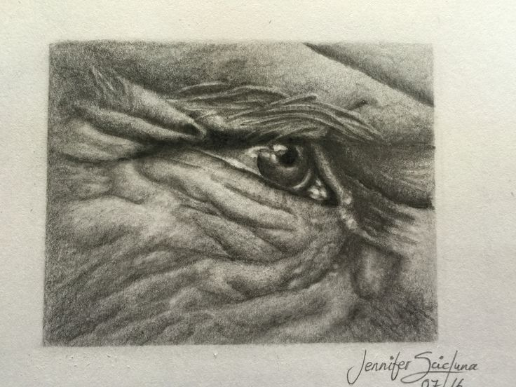 Finally Finished!! 😀  Graphite Pencil on sketch paper.  'A lifetime of Wisdom'
