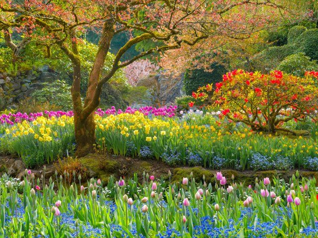 47 best images about spring and summer scenes on pinterest - Garden screensavers free ...