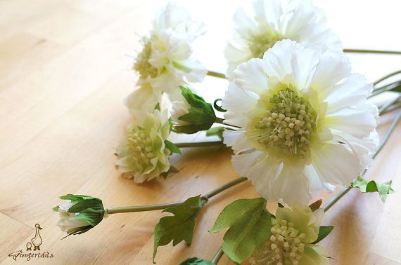 """White Scabiosa Each stem measures approx. 21"""" in length. Each stem has 2 flowers and 1 bud. Each flower measures approx. 1 1/2"""" – 3"""" wide and each bud measures approx. 1/2"""" wide. The listing is for ONE stem. Available in four colors:  1. Light Purple 2. Purple 3. Apple Green 4. White ** This scabiosa can be ordered WITH or WITHOUT the stem.  {Perfect for} - bridal bouquet, corsage, boutonniere, headpiece and wedding crown - gift packaging - wedding, anniversary, birthday, party and ..."""