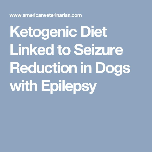 Ketogenic Diet Linked To Seizure Reduction In Dogs With Epilepsy Ketogenic Diet For Dogs Ketogenic Ketogenic Diet