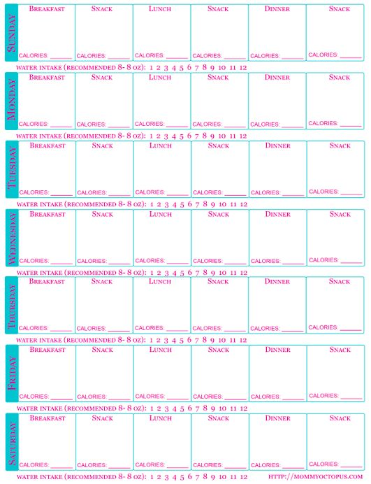 Free Printable Food Journal with Calorie Counter and Water Intake!