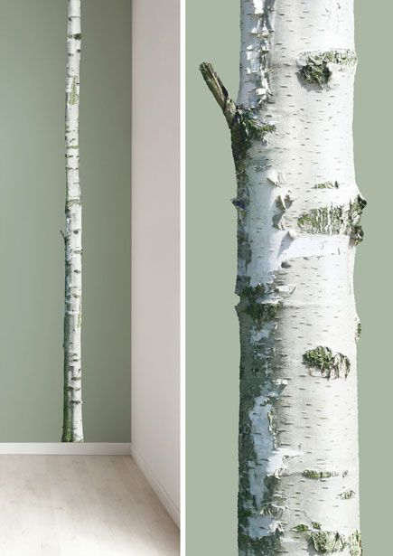 Boom muursticker van levensechte berkenboom Home Tree 2.