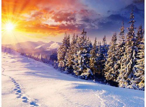 Картина по номерам «Зимний пейзаж» GX8783_Z Цветной ...