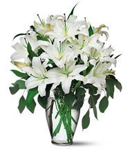 Picture-perfect White #Lilies at http://www.flyingflowers.co.nz/white-lilies