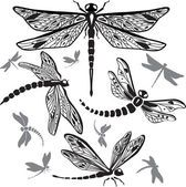 Set of decorative dragonflies — Stock Vector