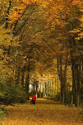 Tiergarten Park í Berlín, ótrúlega flottur staður sem ég mun fara að skoða ! :)