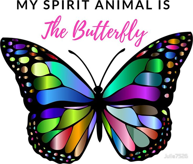 My Spirit Animal is the Butterfly.  What is the meaning of the butterfly? The butterfly animal spirit or totem is a symbol of change and powerful transformation or a metamorphosis in your life. Those who claim the butterfly as their animal spirit believe it brings about renewal, rebirth and a lightness of being or playfulness. This design is made with a colorful butterfly graphic and different fonts. It is for the person who loves butterflies or someone who likes bright colors in their life.