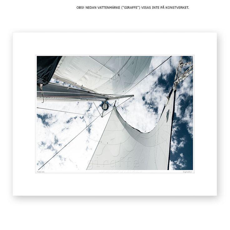 "Sails of the 42 foot catamaran ""Hipsway"" off the coast of Belize"