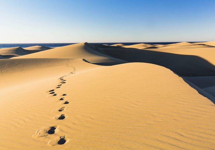 Les dunes de Maspalomas offrent à voir des paysages à couper le souffle.