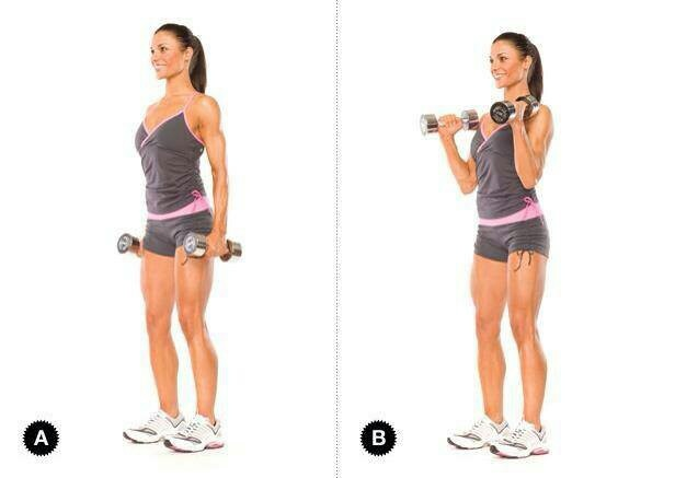 29 best Biceps exercices images on Pinterest | Exercise ...