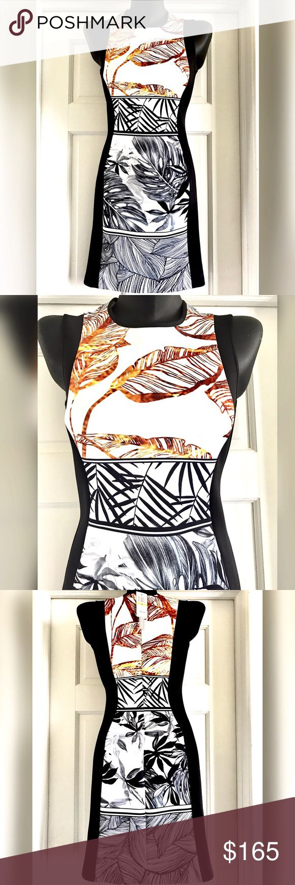 💜 Clover Canyon Sleeveless Print Dress Size S Stunning Print Dress from Clover Canyon.  Size S.  brand new with tags.  Black and white with dark gold/ brown print.  Leaves Print. 90% Polyester 10% Spandex.  Hand Wash. Clover Canyon Dresses