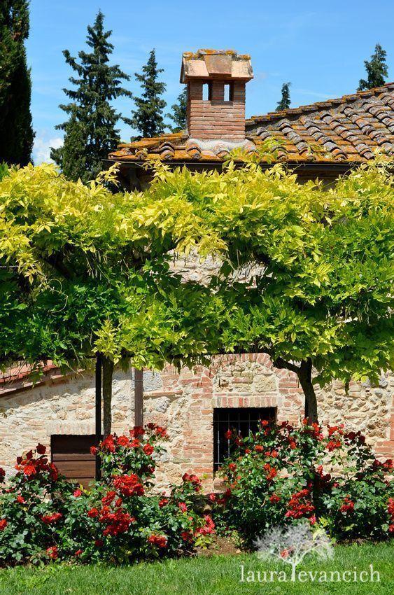 Tuscany, Italy | Italian wine country | Monteriggioni, Italy | photography by Laura Evancich Toskana Italien alte Villa altes Weingut , Casa Italia #italyphotography
