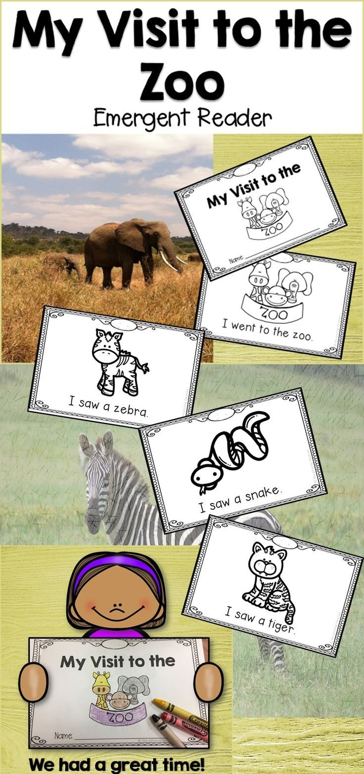 My Visit to the Zoo is a great addition to your Zoo unit. Students will learn about the different types of animals  that they might see at the zoo, all in a take home reader that they can share with their families!
