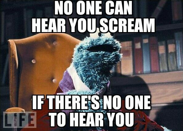 No One Can Hear You Scream Marine Corps Humor Military Quotes Dad Humor