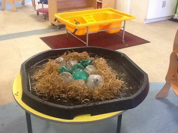 Dinosaur eggs ready to be hatched, the children loved this activity (small world dinosaurs, frozen overnight in coloured water in a balloon) they used tools and salt to hatch the Dino babies EYFS