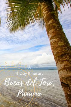 We weren't sure what to expect as our tiny plane touched down in Bocas town, but the azure water surrounding us was a great start. There are so many things to do in Boca del Toro, Panama - but you may want to do nothing at all! Here is our 4-day itinerary for a perfect trip. | Bocas del Toro to Puerto Viejo, Panama to Costa Rica border crossing, Bocas del Toro things to do, Starfish Beach Bocas Town, What to Do in Panama