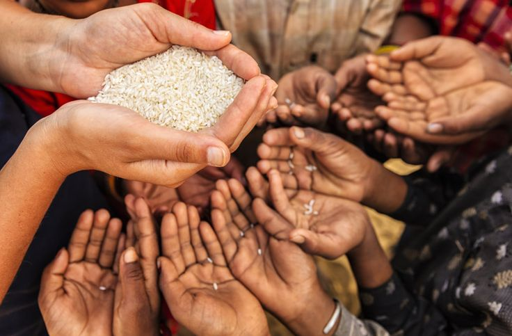 Not sure about the #facts surrounding #worldhunger and the need to help people around the planet? Get all the information you need right here - http://www.thp.org/knowledge-center/know-your-world-facts-about-hunger-poverty/ - and get involved today.