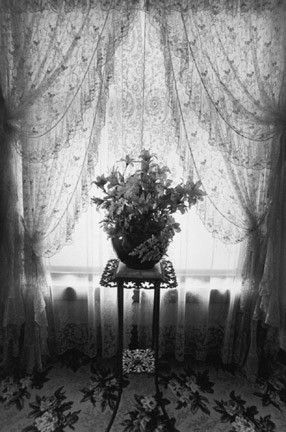 Eva Rubinstein, Silk Flowers, Kalamazoo, 1979