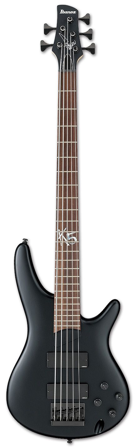 the electric bass essay History of the electric bass guitar essay - bass guitar the most famous bassist  in the world is sir paul mccartney paul mccartney is a former band member of.