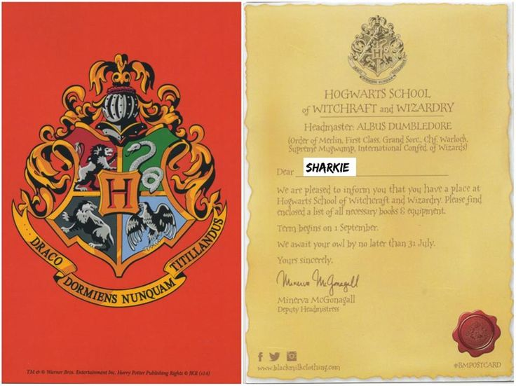 17. Hogwarts Crest or Letter, I want another one so I can display both sides