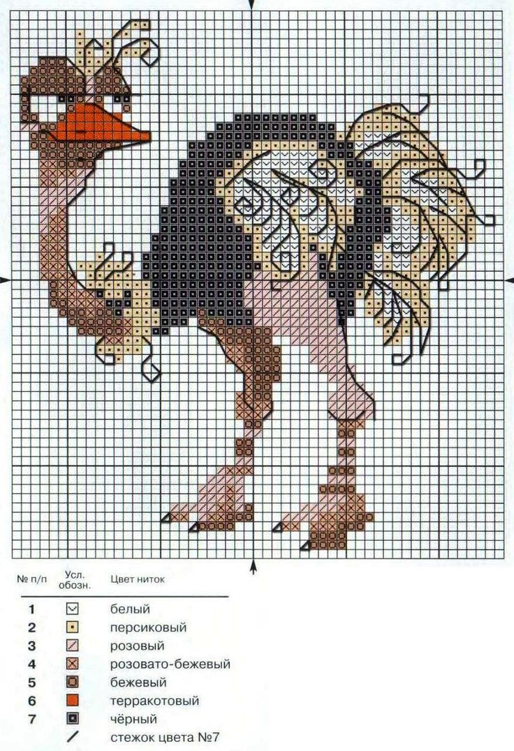 ostrich free cross stitch pattern