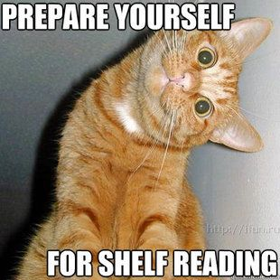Library Problems - Prepare yourself for shelf reading!  My neck hurts just thinking about this!
