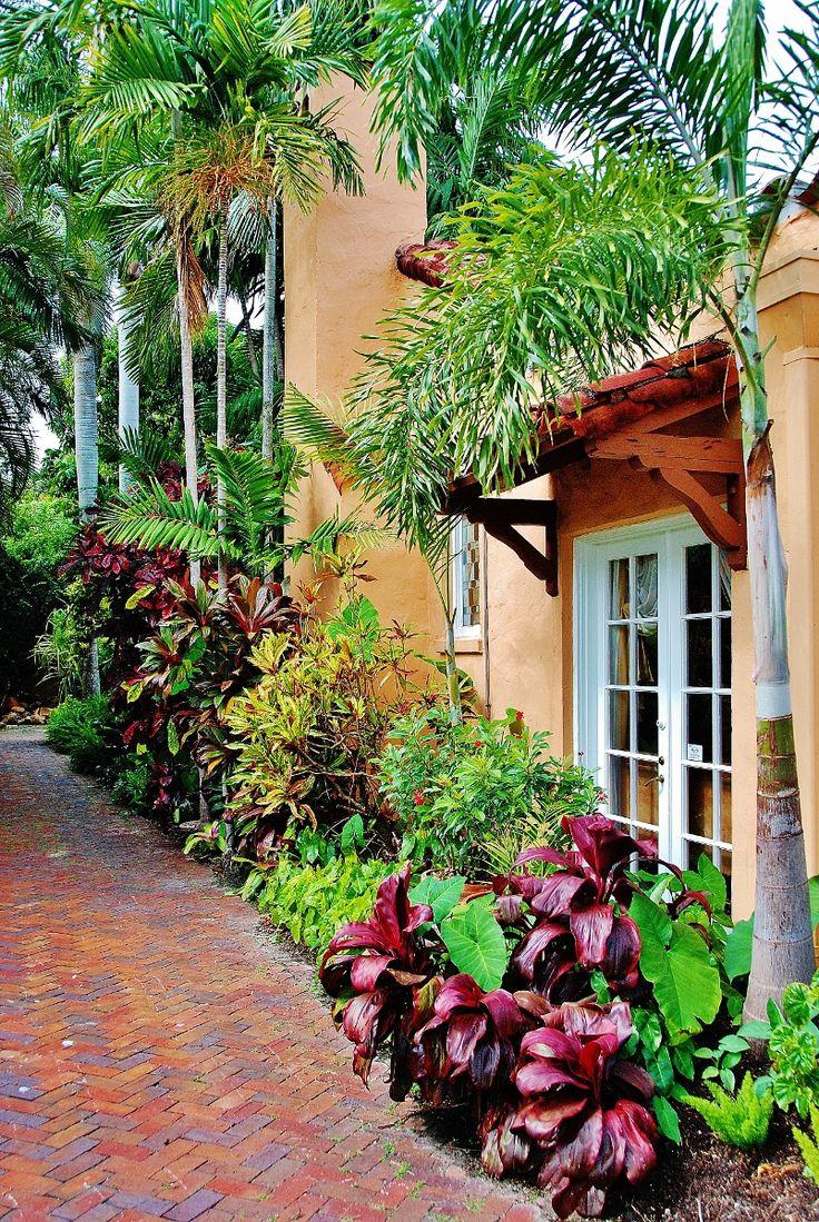 Best 25 Tropical Landscaping Ideas On Pinterest